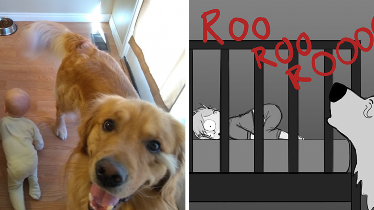 Father Illustrates The Friendship Between His Baby And Their Dog